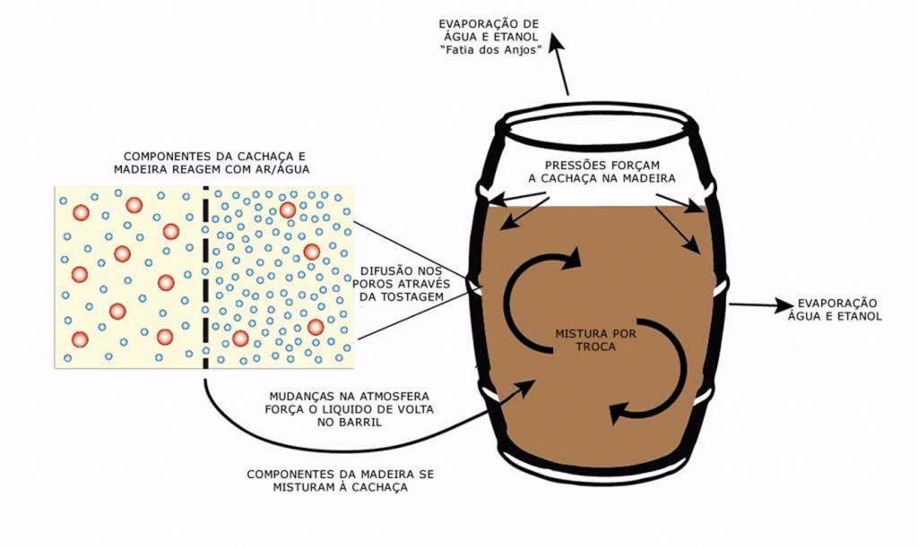 Em que as raízes psicológicas do alcoolismo se compõem