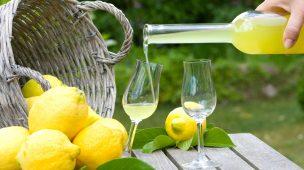 licor Limoncello limão com cachaça