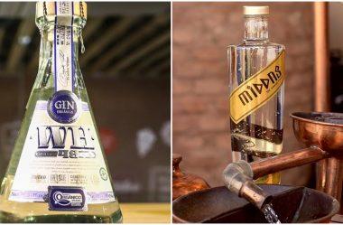 Qual a diferença entre Gin e Cachaça?