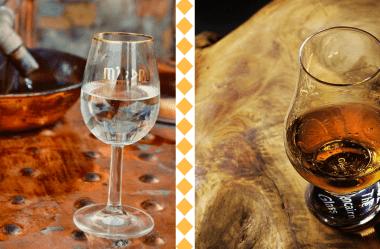 Qual a diferença entre o Whisky e a Cachaça? O guia completo do apreciador!