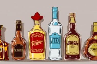 10 perguntas e respostas para te ajudar a ter sua própria marca de bebida destilada.